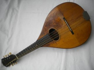 Vintage C.  F.  Martin Style B Mandolin For Oliver Ditson 1923 Herringbone Brazilian photo