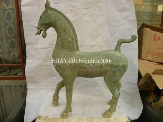 Rare Old Huge Antique Chinese Bronze Dancing Horse Statue Horse photo