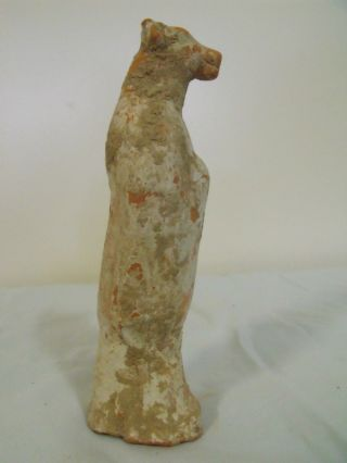 Very Rare Ancient Chinese Human - Cow Tang Dynasty Zodiac Figure,  900 Ad,  6 3/8