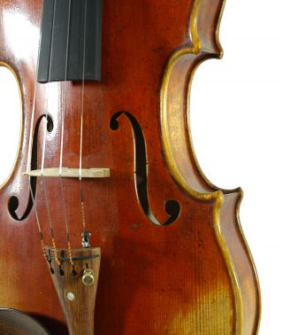 Great Italian Violin Labeled Gustavo Belli C.  2001 4/4 Old Antique Model.  Violino photo