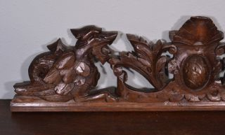French Antique Pediment Architectural Carved Crown Oak Wood Crest photo