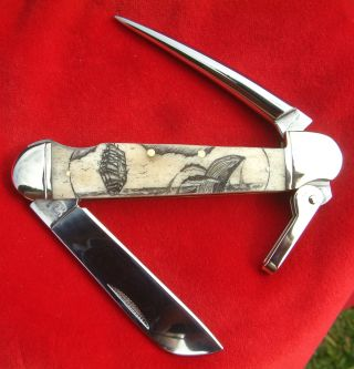 Nautical Scrimshaw Art,  Ship,  Whaie,  Marlin Spike,  Folding Knife/knives photo