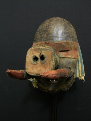 African Tribal Dan Sapo Mask - - - - - - Tribal Eye Gallery - - - - - - - photo