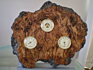 Tasmanian Eucalypt Burl Wall Weather Station photo
