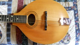 Gibson 1917 A1 Mandolin Solid Player photo