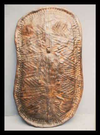 A Textural Leather Shield Imitating Scarification,  Jinka Tribe Of Ethiopia photo