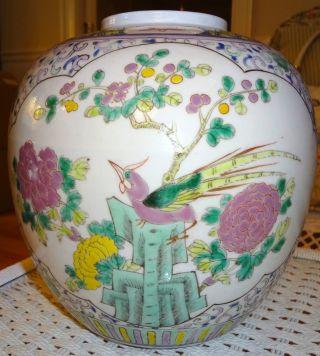 Qing Dynasty Family Rose Porcelain Big Jar photo
