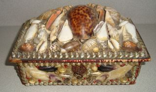 Antique 19th C Folk Art Sailor ' S Sailors Valentine Shellwork Shell Work Box 1 photo