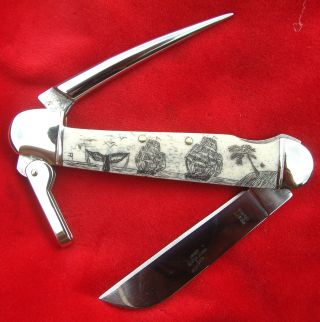 Scrimshaw,  2 Ships,  Palm,  Whale Tail,  Marlin Spike Folding Knife/knives photo