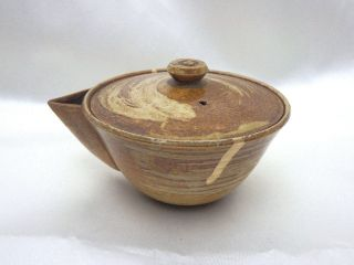 Hobin - Seto Ware - Sencha - Tea Ceremony - Japanese Tea Pot  388 photo