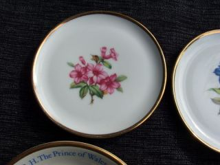 6 X Collectable Vintage Ca 1940 - 1981 Bone China/fine Porcelain Dishes photo