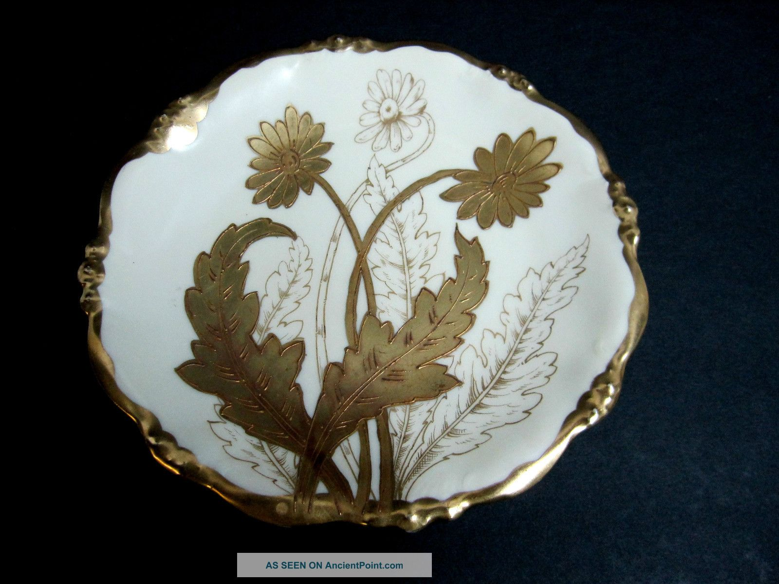 Antique Victorian Elite Works Bawo Dotter Limoges Gold Gild Floral Display Plate Victorian photo
