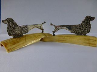 C1912 Antique Arts & Crafts Solid Silver Dog Knife Rests Set On Whale Tooth photo