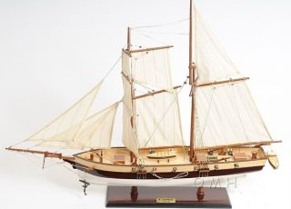 Privateer Lynx Topsail Schooner Ship Model 34