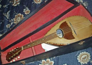 Antique C1930 Mascagni Fratelli Mandolin / Banjo Fabbrica Italian Napoli photo