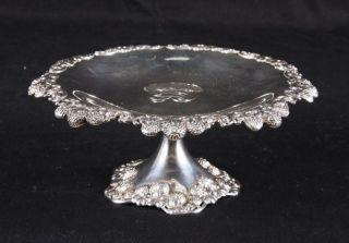 Antique Tiffany & Co.  Circa 1901 Sterling Silver Tazza Clover Blossom 408 Grams photo