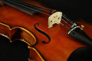 Impressive Italian Violin By Ricardo Pietro C.  2002 4/4 Old Antique.  Violino photo