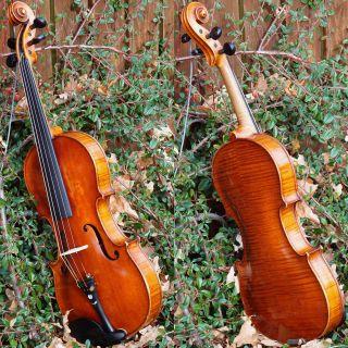 Wonderful Antique Czech Violin By Ladislav F.  Prokop,  Chrudim,  1914 photo