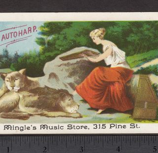 1880s Cf Zimmermann Autoharp Zither Mingle Music Lion Victorian Advertising Card photo