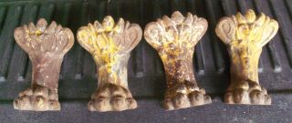 Cast Iron Bathtub Claw Feet Victorian Ball Lion Claw Foot Bathtub Cast Iron Set photo