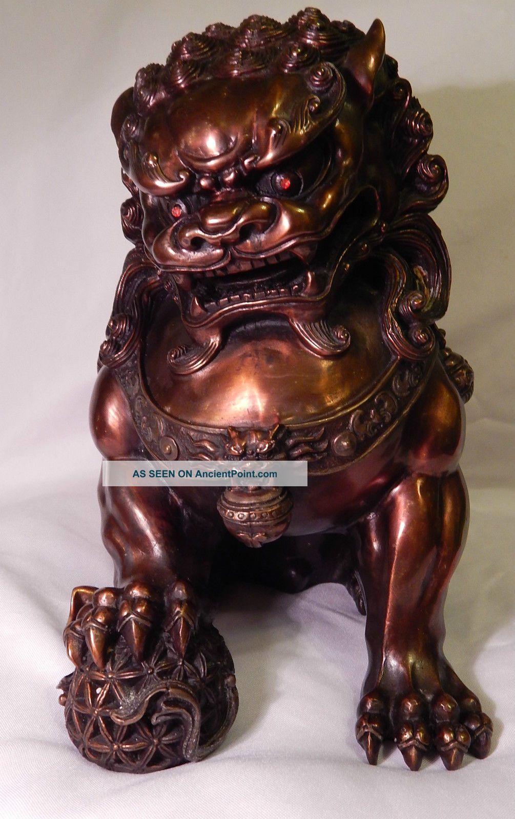 Bronze Dog | Dark Brown Hairs