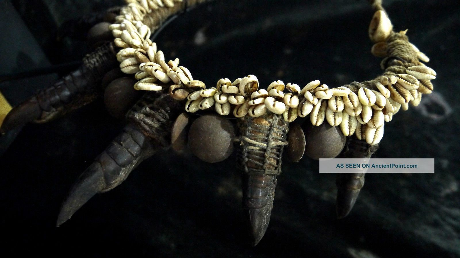 A Rare Cassowary Claw Necklace With Shels Papua New Guinea Tribal Ethnographic Pacific Islands & Oceania photo