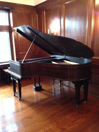 1920 ' S Steinway Model L Walnut Cased Grand Piano photo