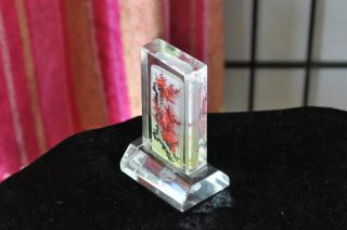 Vintage Tall Glass Chinese Paper Weight …with Painting From The Inside. . . . photo