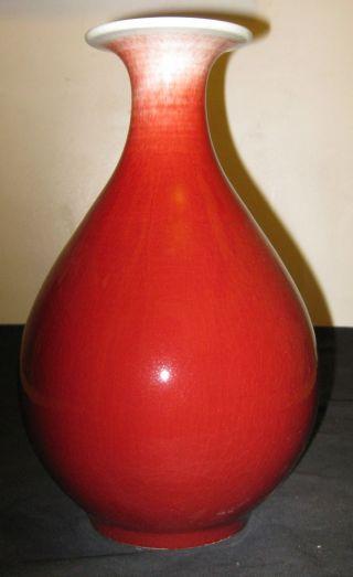 Chinese Porcelain Monochrome Oxblood Vase,  Zindezhen Zhi Mark,  19th C.  ; Nr. photo