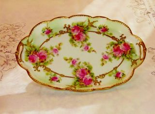 Limoges Covered With Handpainted Roses Tray Ca.  1900 photo