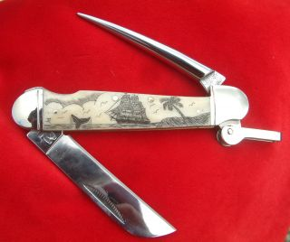 Nautical Scrimshaw,  Tall Ship,  Palm Tree,  Whale,  Rigging Folding Knife/knives photo
