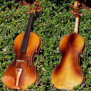 2 Good Vintage Czech 7/8 Violins: 1.  Frantisek Herclik 1922,  2.  Not Labelled photo
