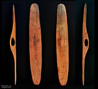Antique Australian Aboriginal Parrying Shield,  Carved,  Early 20th C,  Central Au. photo