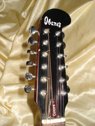 Ibanez Concord 12 String Guitar photo