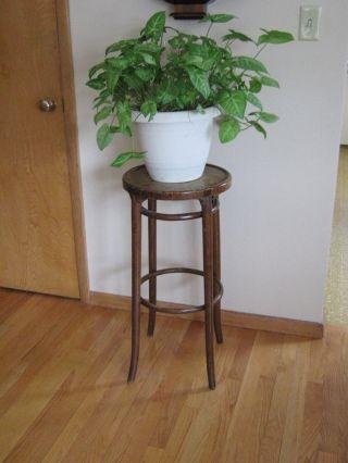 Vintage Wood Plant Stand 1950