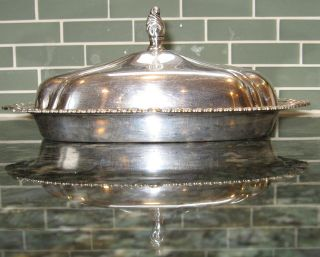 Silver Plated Butter Dish.  Sheridan Silver Co Inc.  Taunton,  Ma. photo