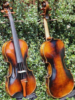 Fine Antique Czech Violin By Richard Gareis,  Oloví U Kraslic.  Full,  Fruity Tone photo