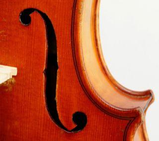 Gorgeous Antique German Violin August Liebich - - Powerful photo