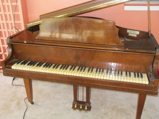 Antique Grand Piano photo