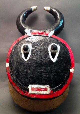Baule Goli African Keple Wood Horn Face Mask Cote I ' Voire Ethnix photo