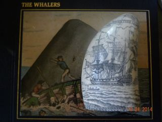 Scrimshaw Sperm Whale Tooth Replica