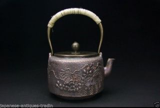 Japanese Antique Forest Ryubun - Do Grape Kettle Tea Tetsubin Chagama Cast Iron photo