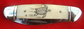 Nautical Scrimshaw Art,  Turtle,  2 Blade Canoe,  Folding Knife/knives photo