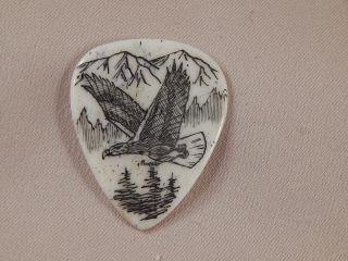 Scrimshaw Bone Guitar Pick - Soaring Eagle photo