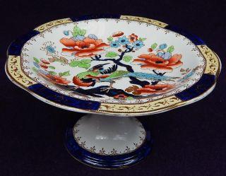 Gorgeous Antique Tree Of Life W/pheasant Compote English Semi - Porcelain? photo