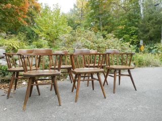 Vintage / Antique Set 6 Solid Maple Dining Chairs Branded On The Bottom photo