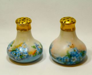 Vintage Salt & Pepper Shakers Porcelain Hand Painted Gold Top Collectible photo