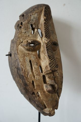 Lega Initiation Mask,  Congo.  Fine Example. photo