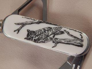 Scrimshaw Resin Multi Tool Key Ring Knife Owl photo