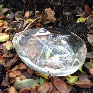 Antique Clear Glass Chandelier Crystal Replacement Piece (3.  6cm X 5.  2cm) photo